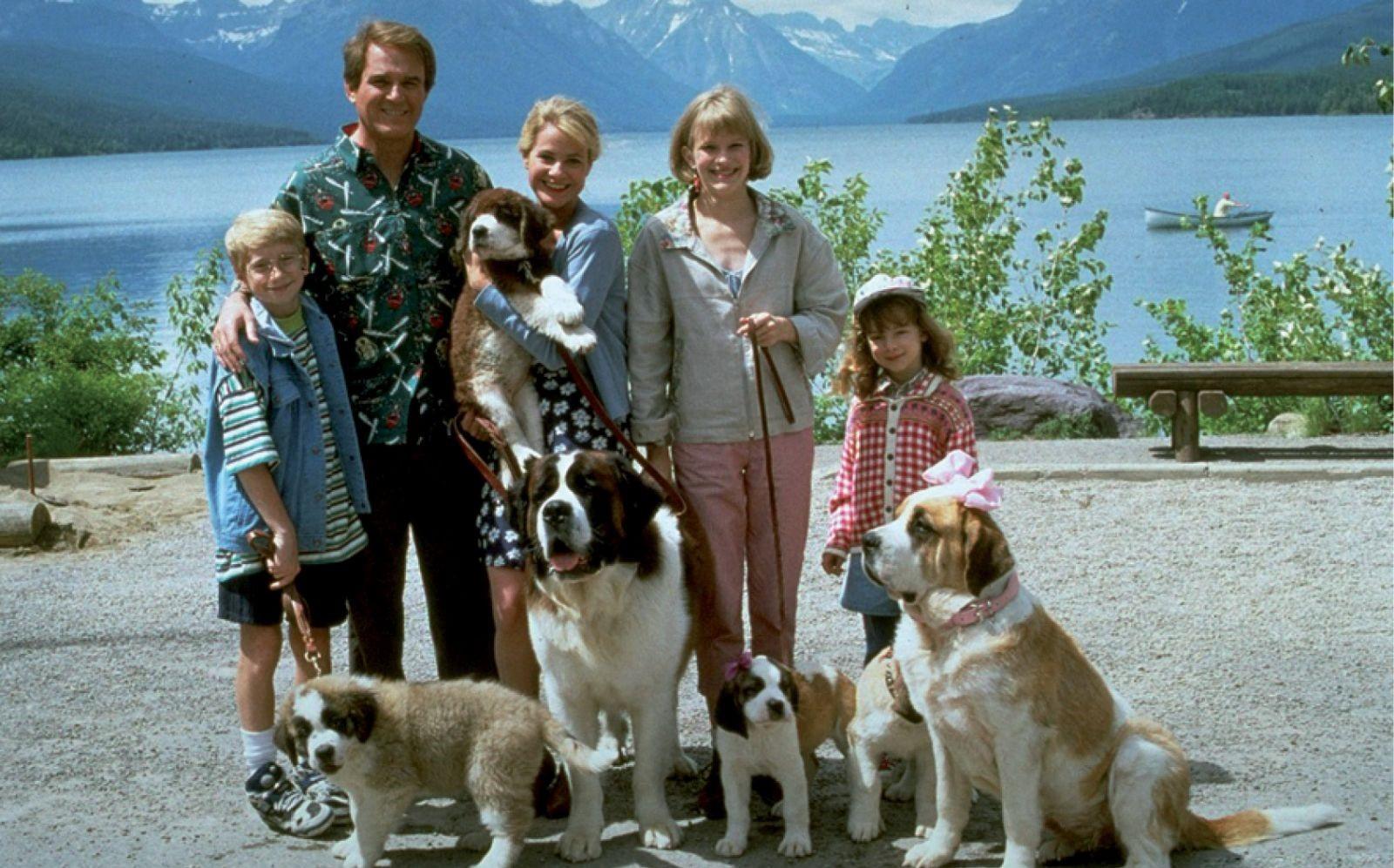 Собаки в кино: Топ-5 любимых персонажей